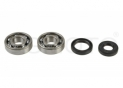seals kit+crankshaft bearing Kawasaki