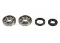 seals kit+crankshaft bearing Yamaha