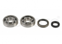 seals kit+crankshaft bearing Suzuki